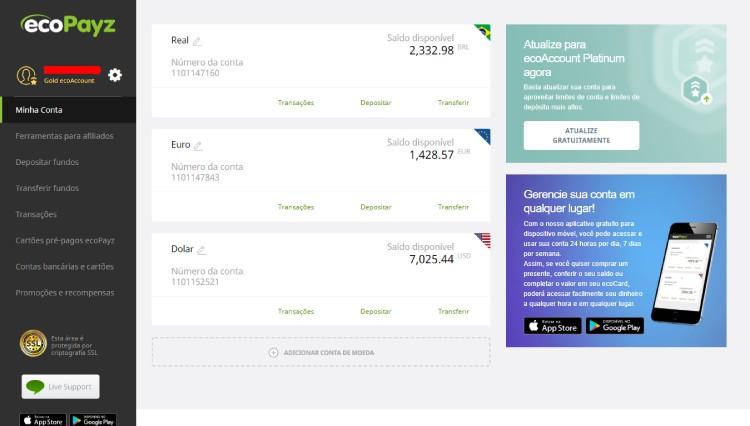 Home page da ecoPayz quando acessada pelo computador. Layout 2020